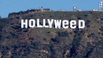 Hollywood sign vandalised