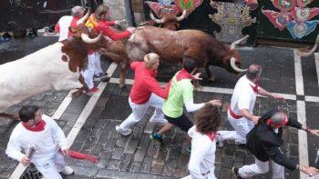 10 gored, injured in Pamplona bull run
