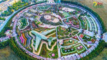 Dubai Miracle Garden to reopen on November 1