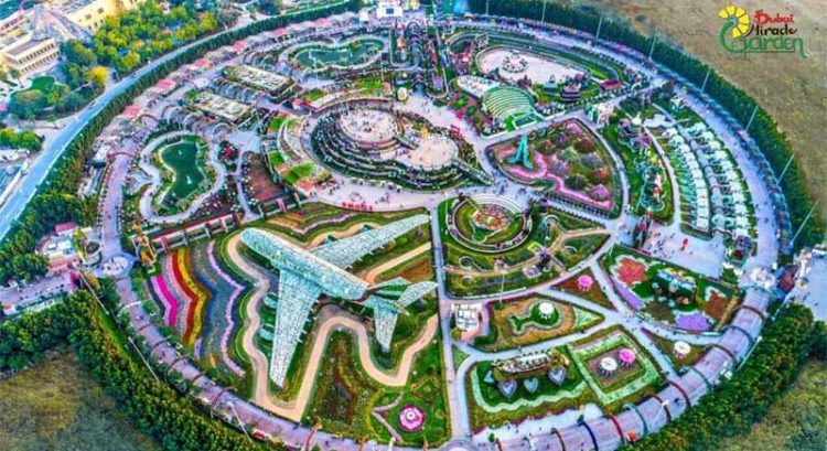 Watch 'creatures' in Dubai's not-so-secret Miracle Garden