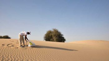 Dubai issues 9 guidelines for desert visitors