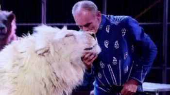 Dubai circus told to stop using lions at Last Exit following backlash