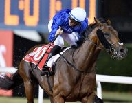 Thunder Snow snatches Dubai World Cup 2019 title