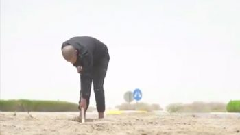 WATCH: Abu Dhabi motorist made to sweep road, plant flowers after roundabout stunt