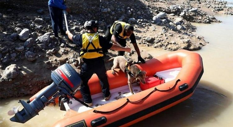 Man missing after UAE floods found dead in Oman