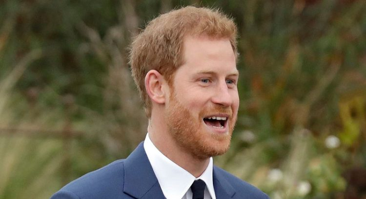 Prince Harry reveals his dream job