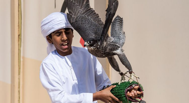 UAE falconry championship sets record for number of young falconers