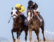 World's richest horse race postponed in Dubai