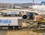Dubai's dnata lays off 'substantial number' of employees