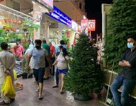 Dubai's first Christmas trees of 2020 sold in Satwa