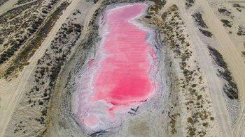 Pink Lake in Ras Al Khaimah: Mystery solved