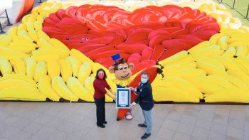 Dubai Global Village breaks Guinness record